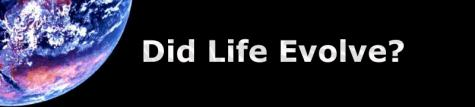 Did Live Evolve?