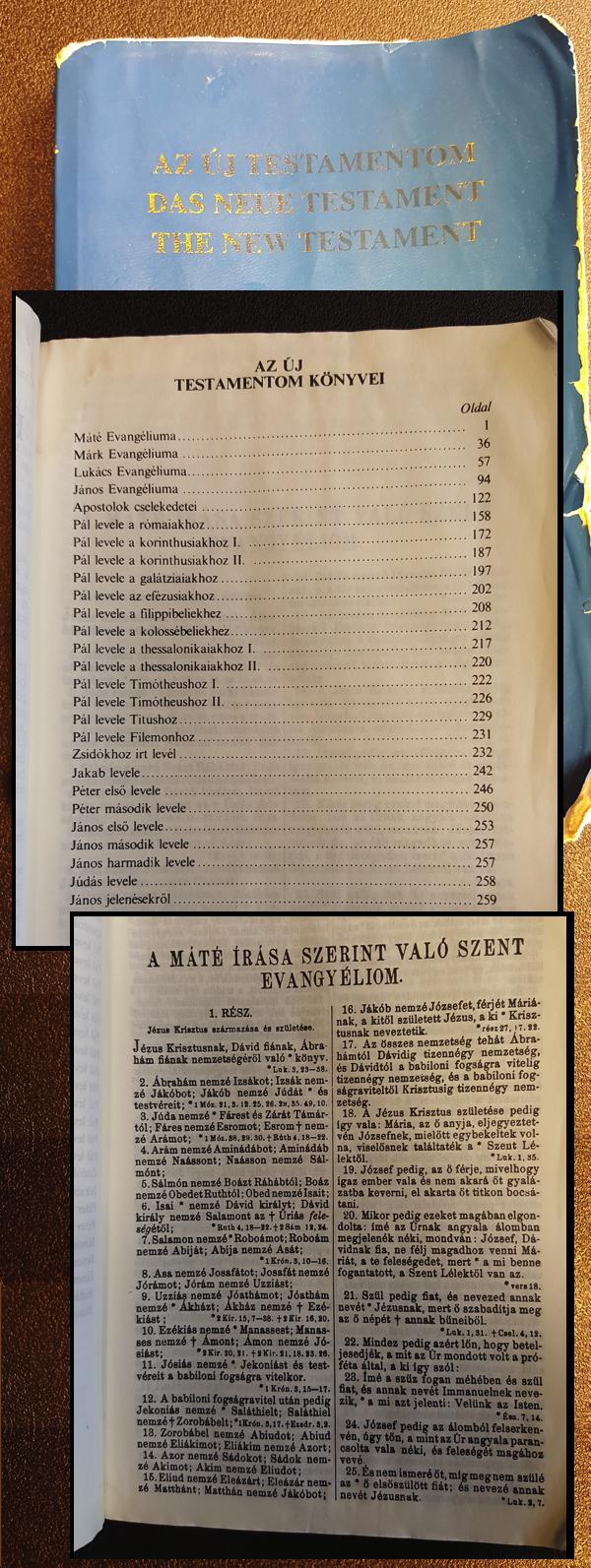 hungarian-modern-bible.jpg