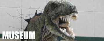 T. rex breaks out of creation museum :)