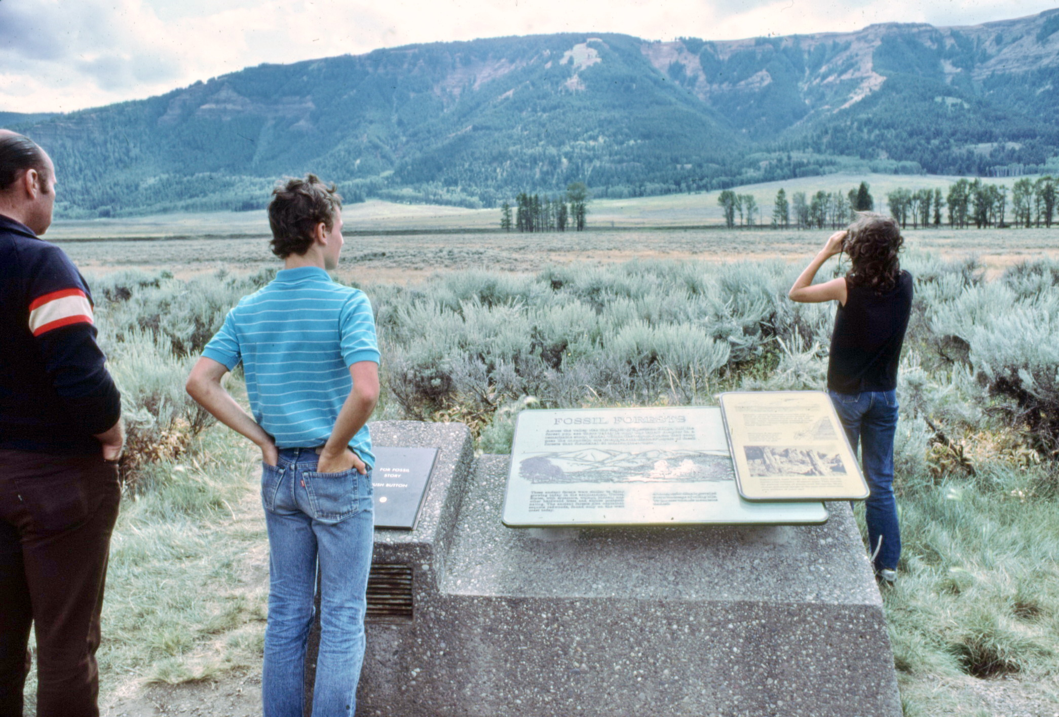 1983 photo of Yellowstone Specimen Ridge exhibit sign