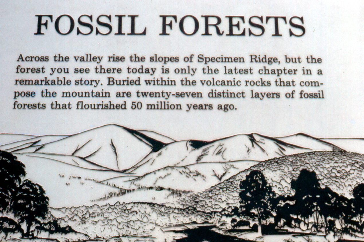 Close-up of 1983 Specimen Ridge exhibit sign