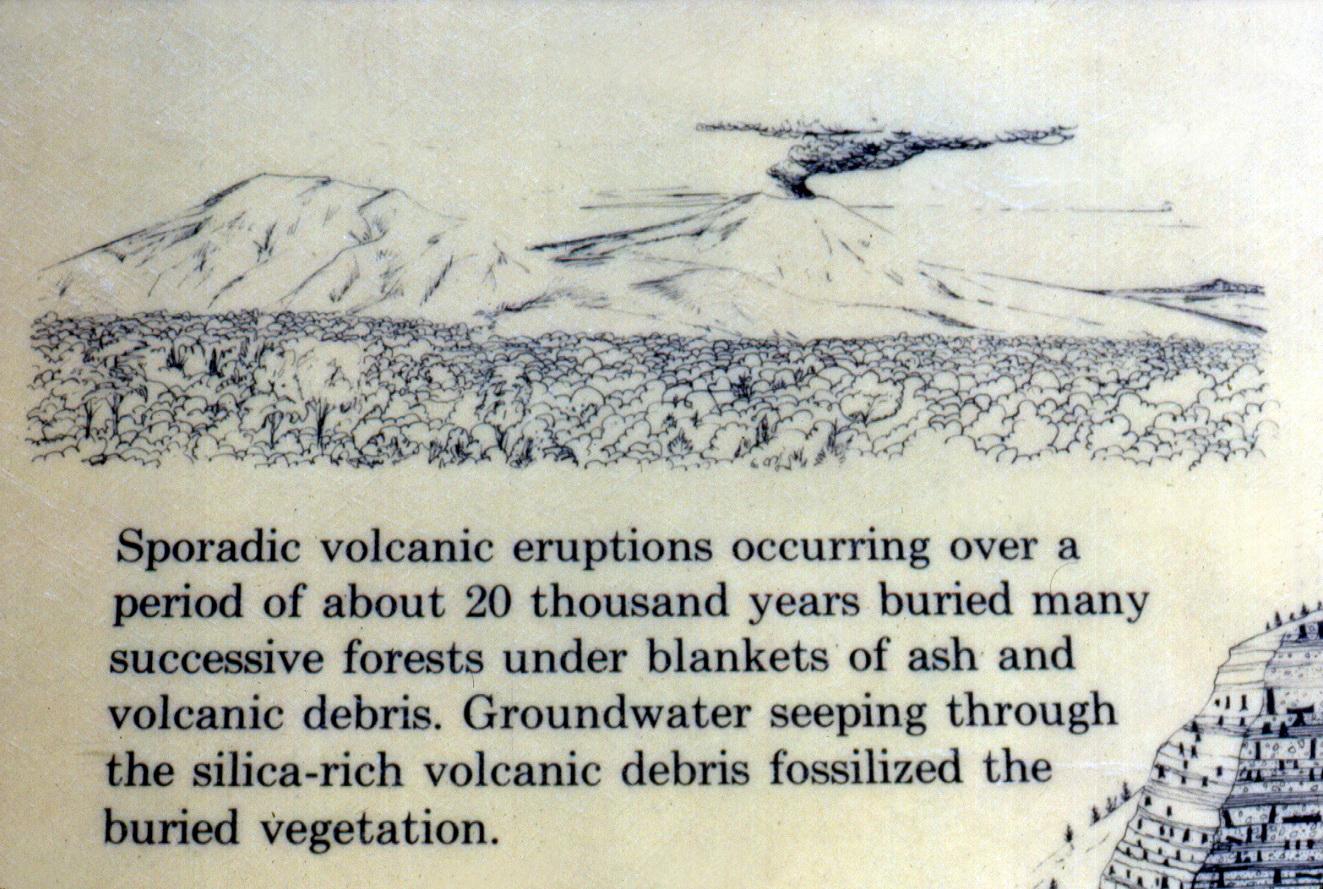 Close-up of 1983 Specimen Ridge exhibit sign